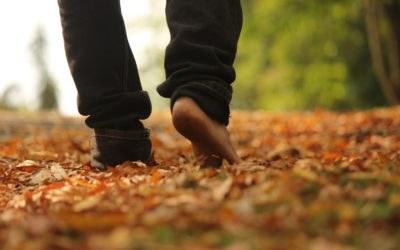 Internationale Resource-Studie: Achtsames Gewahrsein, Körperwahrnehmung und Mitgefühl lassen sich trainieren