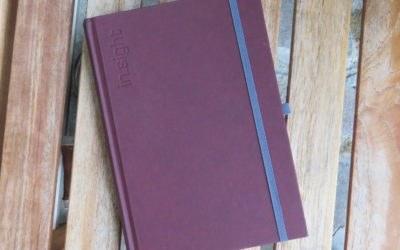 Im Buchhandel erhältlich: in.sight – Achtsamkeitsbegleiter und Businessplaner